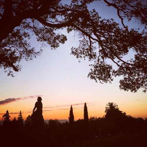 calm strength sunset